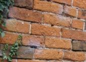 cropped-brick-wall-9.jpg
